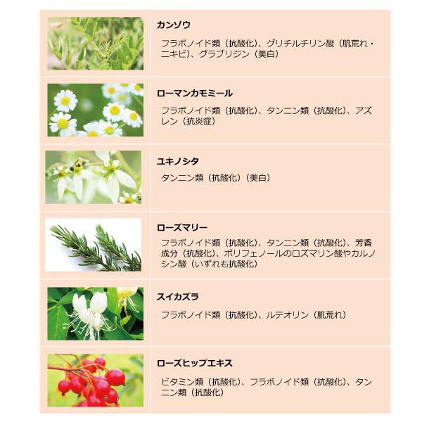 抗酸化力の強い植物成分