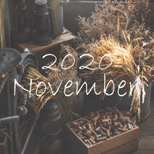 オーガニックフェイシャル11月のご予約可能日