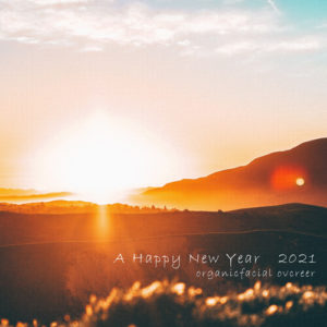 2021新年